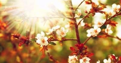 Květnové prázdniny